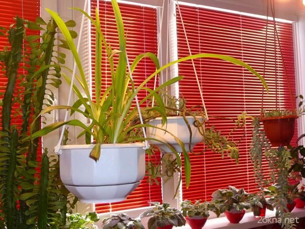 Цветные жалюзи Изолайт на пластиковом окне - фото